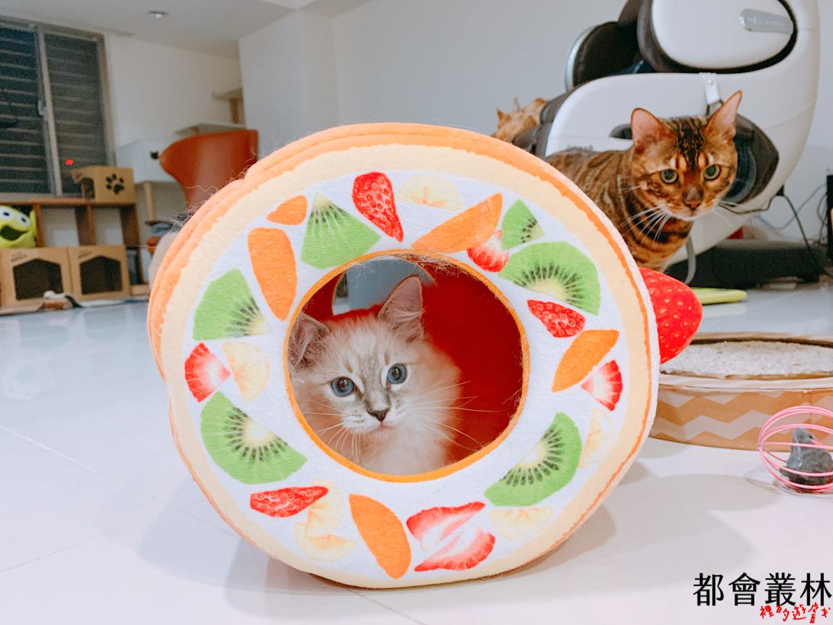 【貓床貓屋】日本 Felissimo 貓部|貓咪水果塔床|水果蛋糕捲貓屋