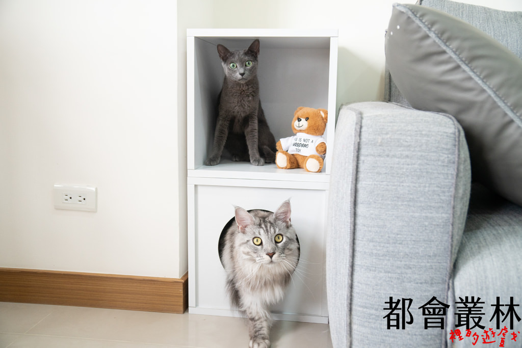 【貓咪用品】大貓必備 🐱 Angle Wave 安閣家 巧拼躲貓貓櫃(胖胖版)、巧拼單格櫃(胖胖版)